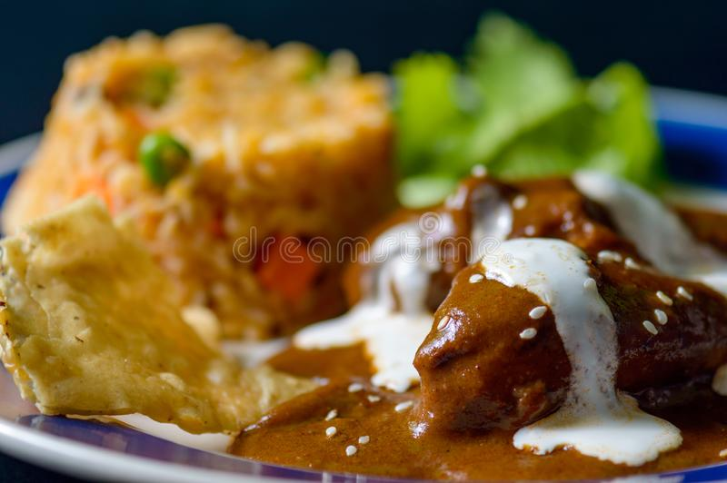 Mole Poblano sauce with chicken and Mexican rice royalty free stock images