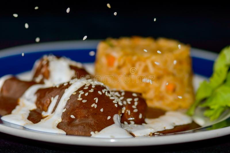 Mole sauce and chicken, Mexican food with sesame seeds royalty free stock image