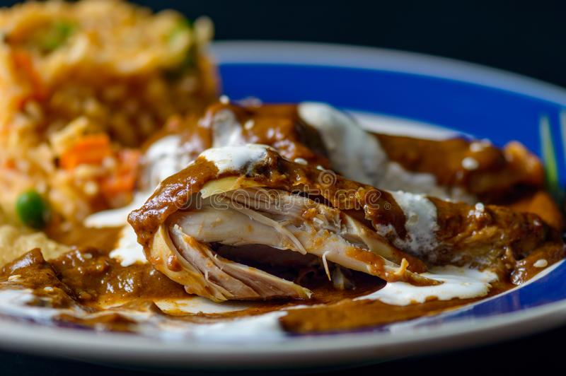Mole sauce, Mexican food royalty free stock images