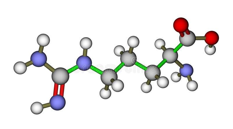 Molecola dell'arginina dell'amminoacido illustrazione vettoriale