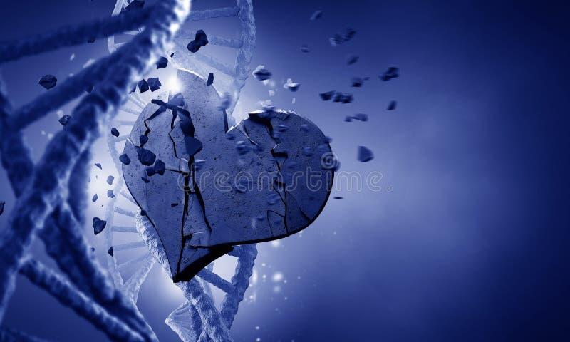 Molecola e cuore del DNA immagini stock