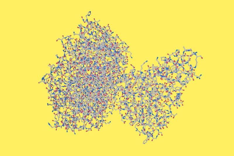 Moleculair model van choleratoxine De atomen worden vertegenwoordigd als gebieden met conventionele kleurencodage: gele zwavel royalty-vrije stock foto's