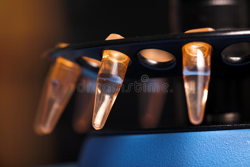Molecular biology. Small plastick tube in tube rack stock photography