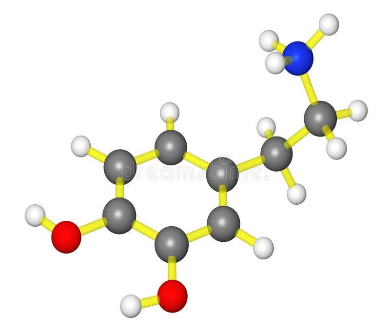 Download Molecular Model Of Dopamine Stock Illustration - Image: 9645019