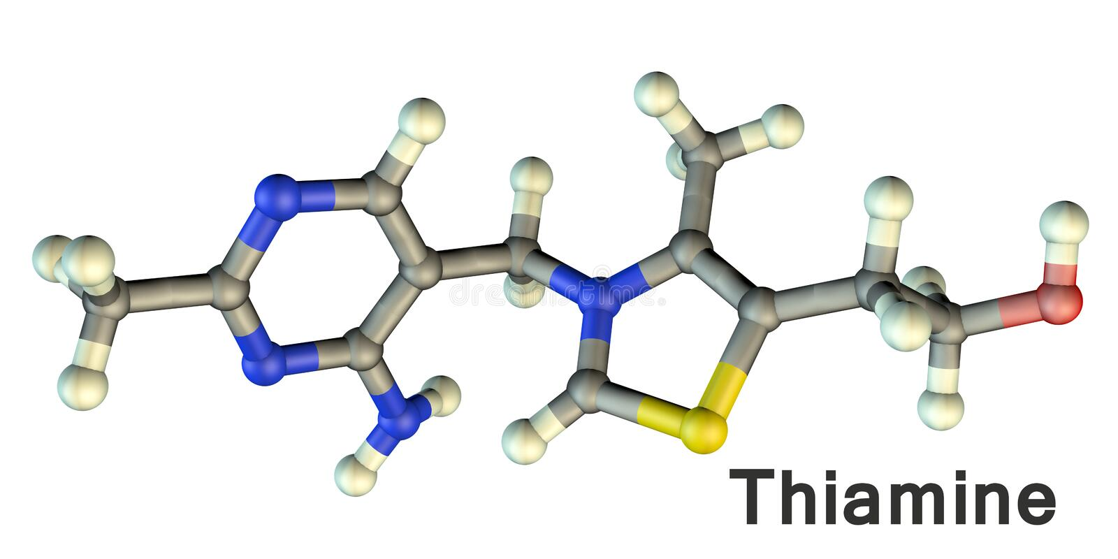 Molecular model of vitamin B1, thiamine. 3D illustration. A vitamin of B group with erythropoietic, antioxidant, glucose-regulating and mood modulating stock illustration