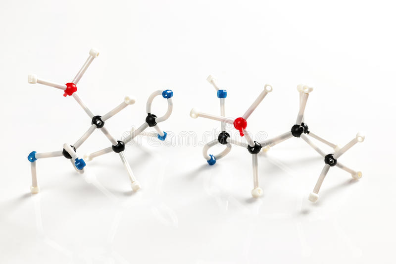 Molecular models of two amino acids. Structure of valine and aspartic amino acid molecules represented with molecular model building kit stock photography