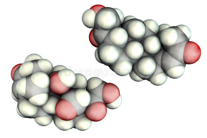 Molecule of aldosterone hormone. 3D illustration. It is mineralocorticoid hormone produced by adrenal gland vector illustration
