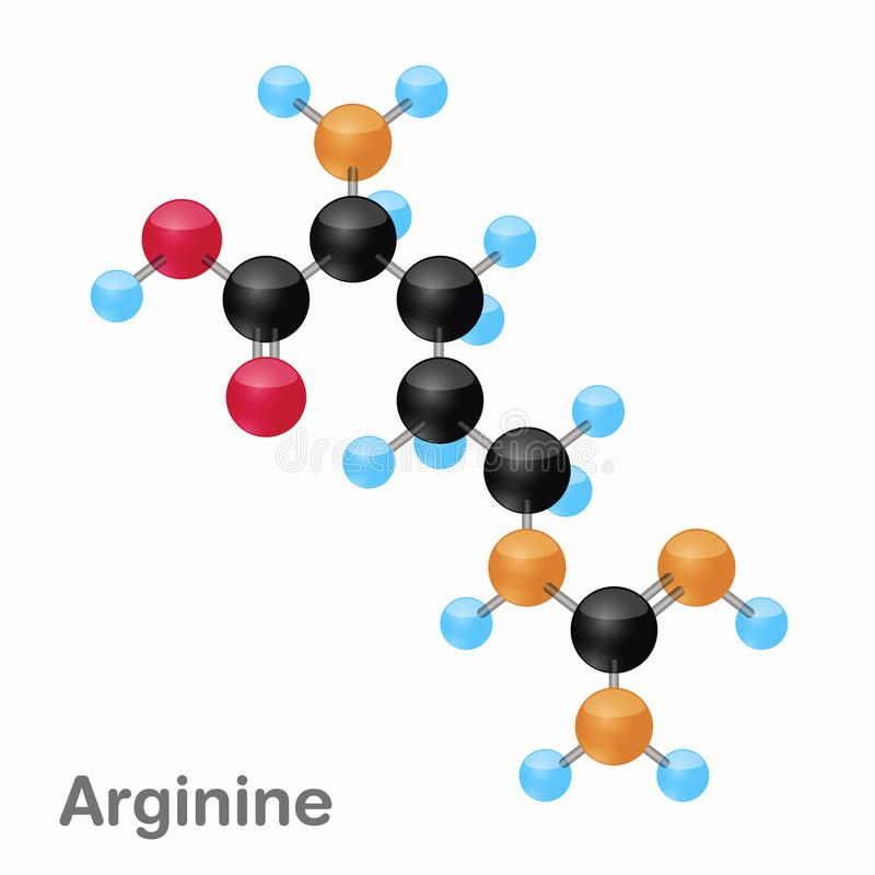Molecular omposition and structure of Arginine, Arg, best for books and education stock illustration