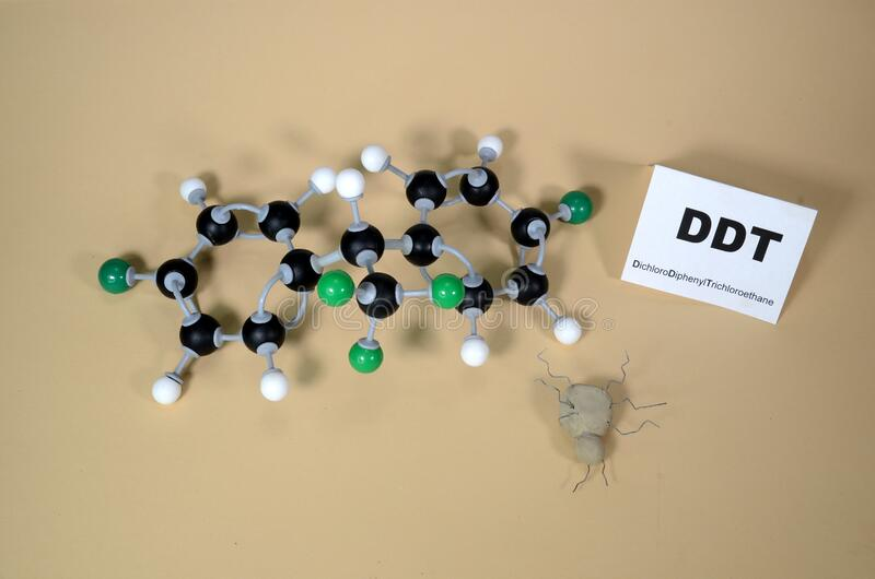 Molecule model of DDT - Dichlorodiphenyltrichloroethan with illustrative dead bug. White is Hydrogen, black is Carbon, and Green is Chlorine stock photography