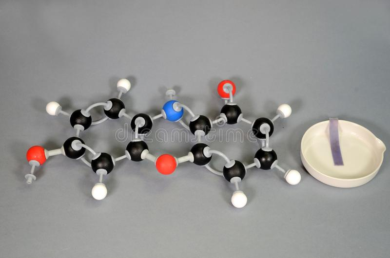 Molecule model of Litmus in blue state. Molecule model of Litmus in blue state, with a piece of blue litmus paper on a white plate. White is Hydrogen, black is royalty free stock photography