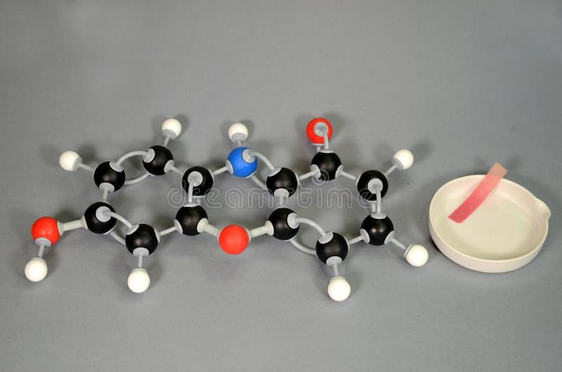 Molecule model of Litmus in red state. With a piece of red litmus paper on a white plate. White is Hydrogen, black is Carbon, red is  Oxygen, and blue is royalty free stock photography