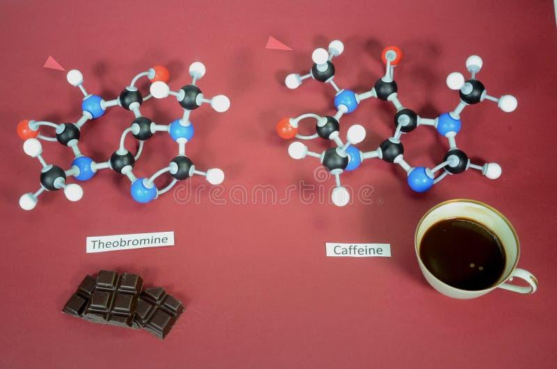 Moleculomodelle von Theobromin und Koffein nebeneinander Der Pfeil hebt den einzigen Unterschied hervor Weiß ist Wasserstoff, sch stockfotografie