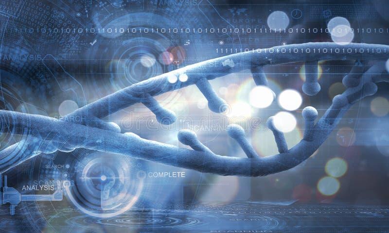 Molekuła DNA obrazy stock