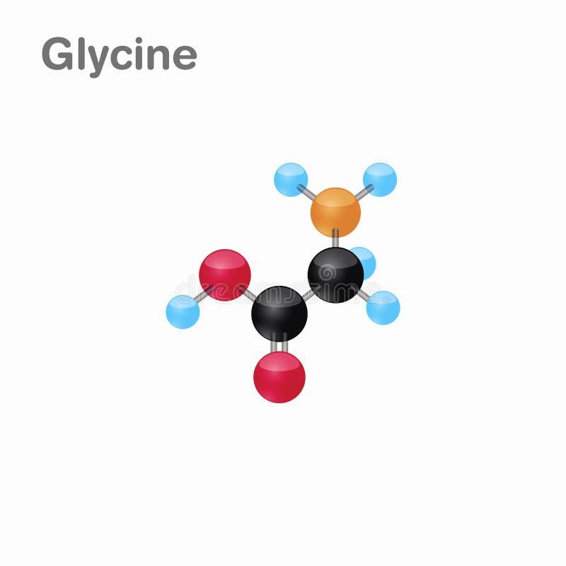 Molekylär omposition och struktur av Glycine, Gly som, är bästa för böcker och utbildning vektor illustrationer