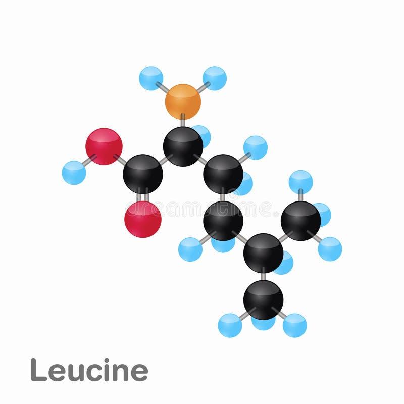 Molekylär omposition och struktur av Leucine, leuen som, är bästa för böcker och utbildning royaltyfri illustrationer