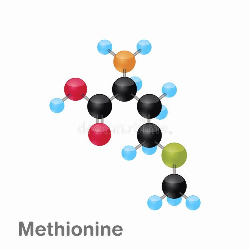 Molekylär omposition och struktur av Methionine, mött som är bästa för böcker och utbildning stock illustrationer