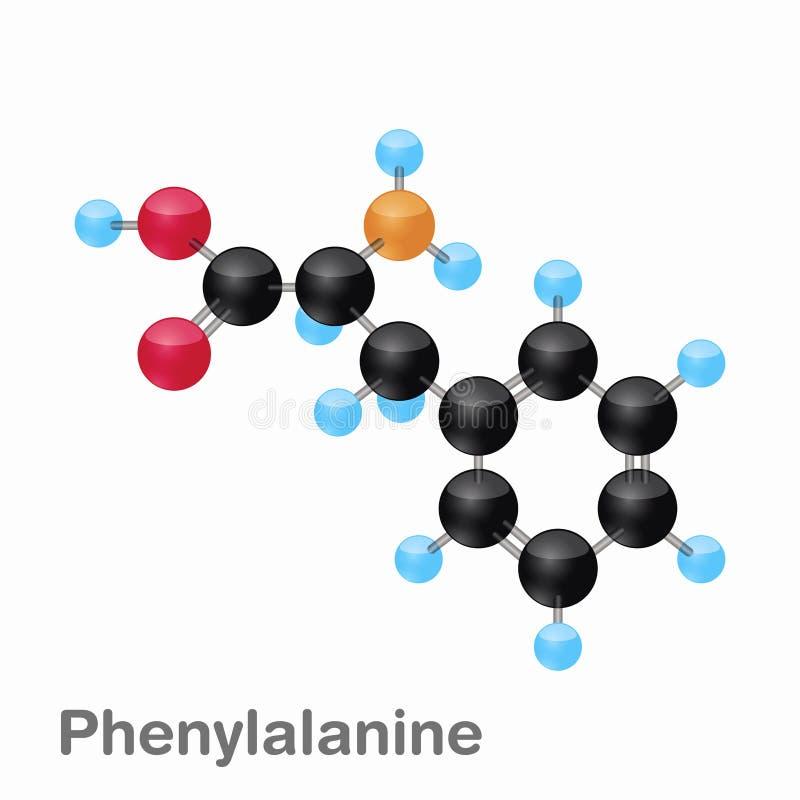 Molekylär omposition och struktur av Phenylalanine, Phe som, är bästa för böcker och utbildning vektor illustrationer