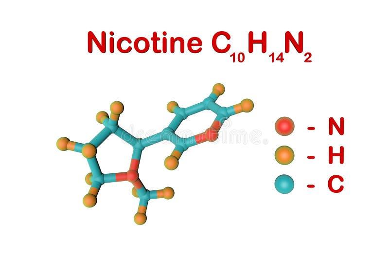 Molekylär struktur av nikotin, en växtalkaloidgåva i tobak Atomer föreställs som sfärer med att kodifiera för färg stock illustrationer