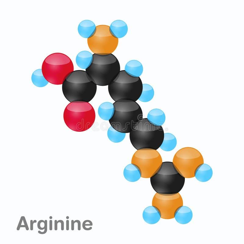 Molekyl av Arginine, Arg, en aminosyra som används i biosynthesisen av proteiner royaltyfri illustrationer