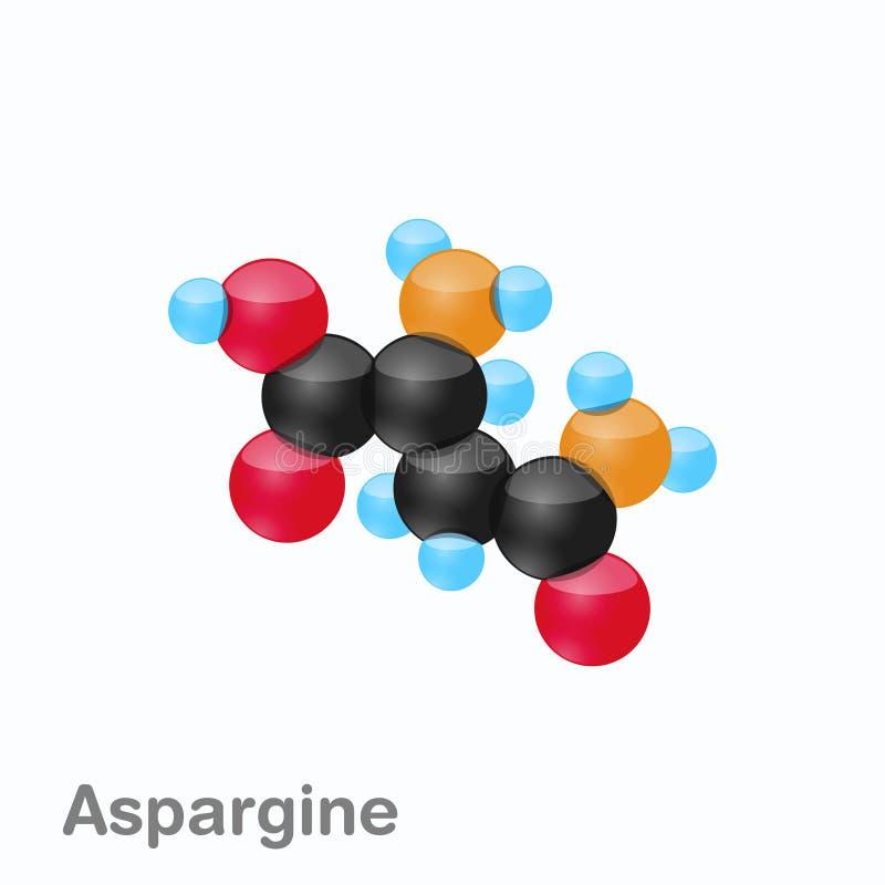 Molekyl av asparaginen, Asn, en aminosyra som används i biosynthesisen av proteiner royaltyfri illustrationer