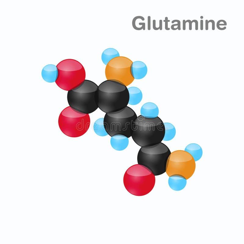 Molekyl av Glutamine, Gln, en aminosyra som används i biosynthesisen av proteiner stock illustrationer