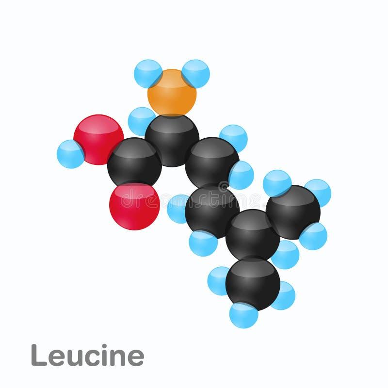 Molekyl av Leucine, Leu, en aminosyra som används i biosynthesisen av proteiner royaltyfri illustrationer