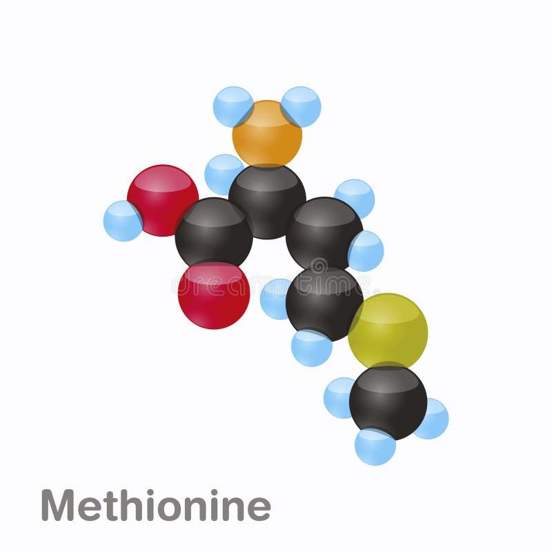 Molekyl av Methionine som möts, en aminosyra som används i biosynthesisen av proteiner stock illustrationer