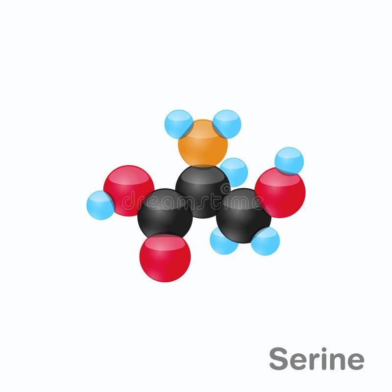 Molekyl av Serine, Ser, en aminosyra som används i biosynthesisen av proteiner vektor illustrationer