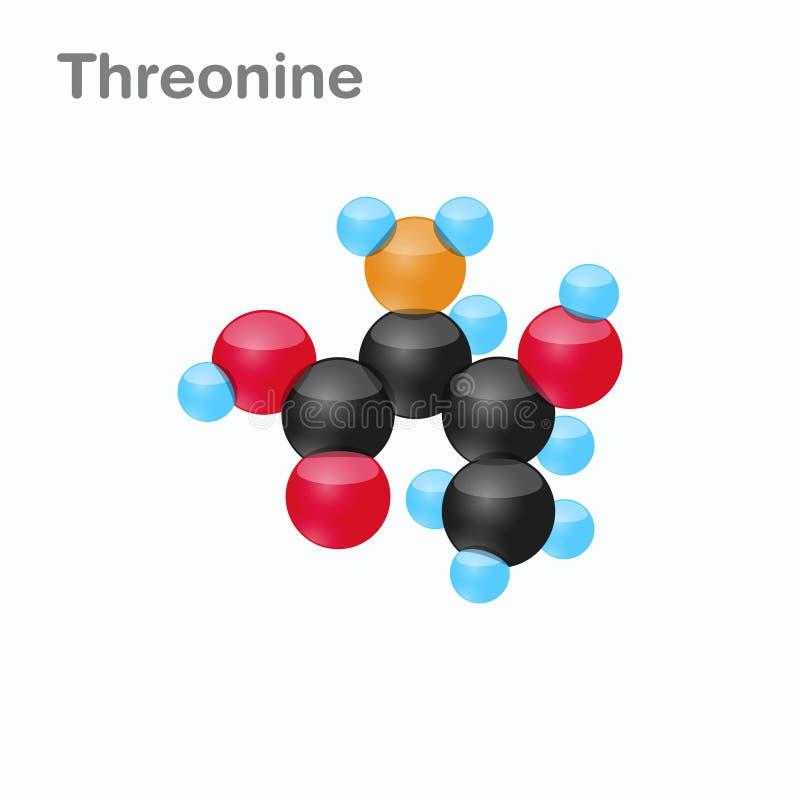Molekyl av Threonine, Thr, en aminosyra som används i biosynthesisen av proteiner stock illustrationer