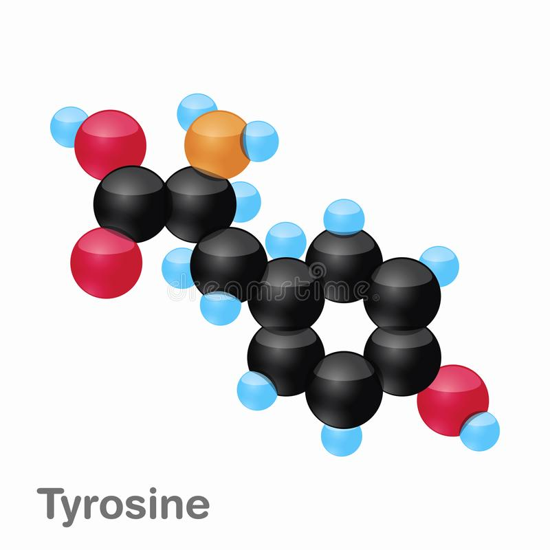 Molekyl av Tyrosine, Tyr, en aminosyra som används i biosynthesisen av proteiner royaltyfri illustrationer