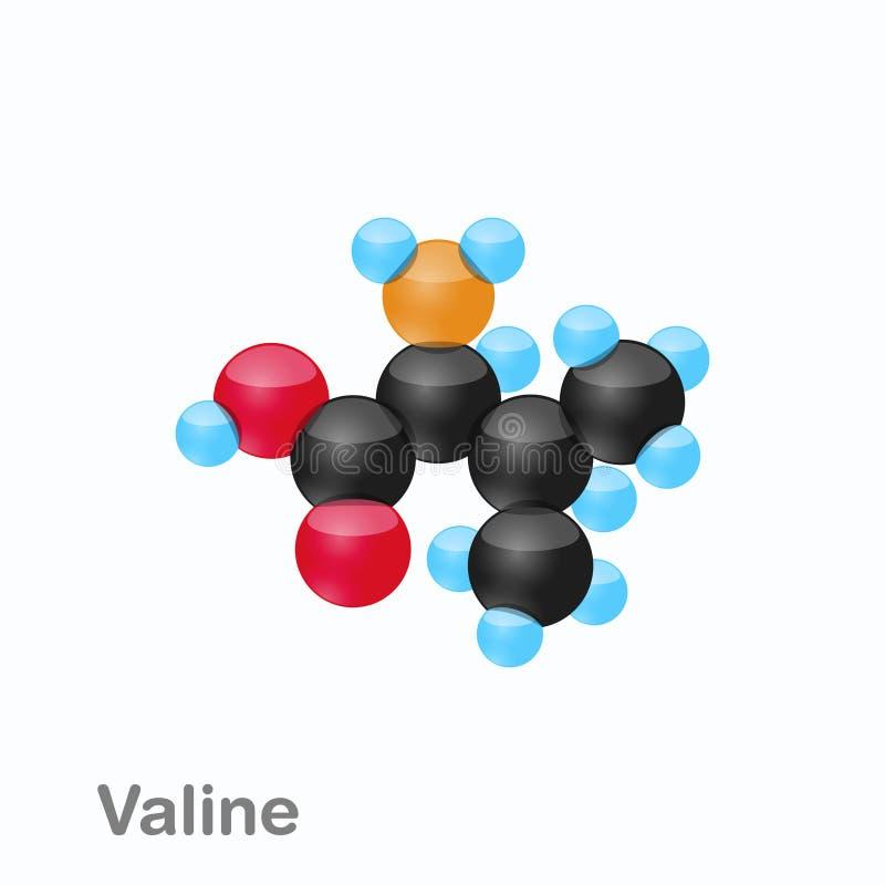 Molekyl av Valine, Val, en aminosyra som används i biosynthesisen av proteiner royaltyfri illustrationer