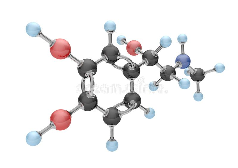 Molekyladrenalin royaltyfri illustrationer