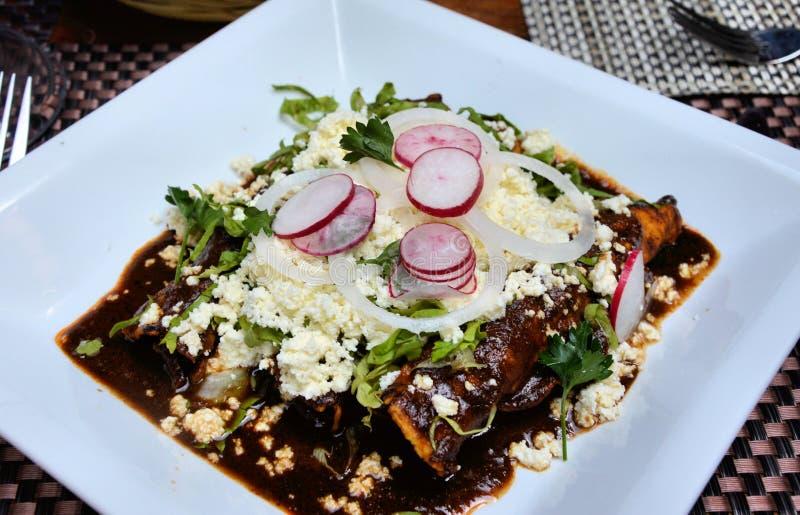 Molenchiladas stock afbeelding