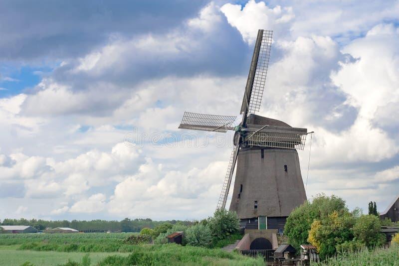 Molens in Holland stock afbeeldingen