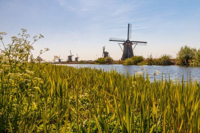Molens van Kinderdijk stock fotografie