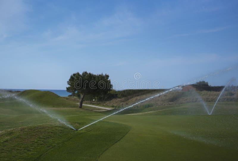 Molhando o campo de golfe imagens de stock