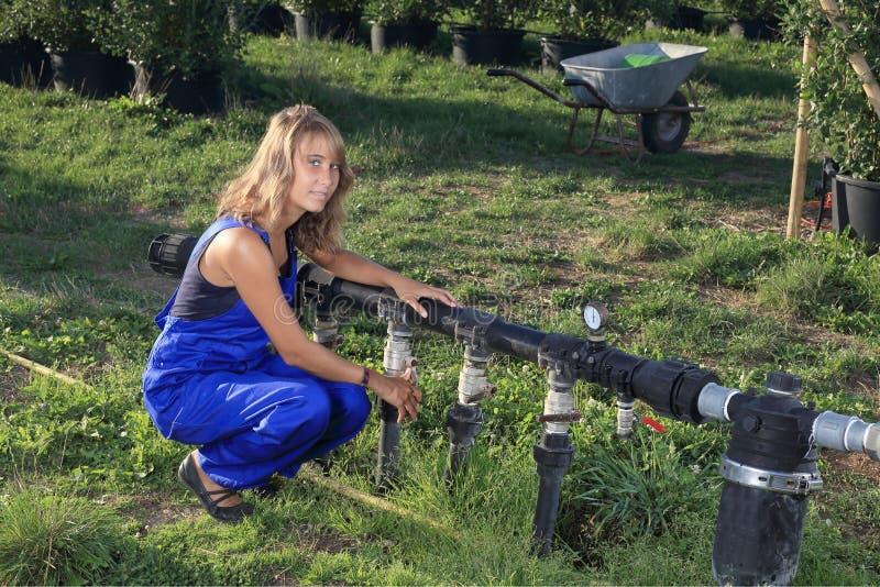 Molhar de jardinagem do berçário com um sistema de irrigação imagens de stock royalty free