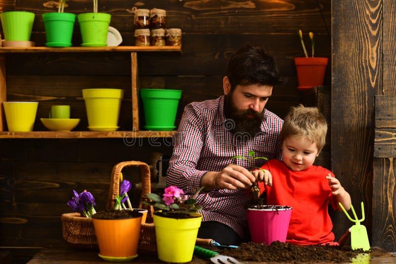 Molhar do cuidado da flor Adubos do solo Pai e filho jardineiro felizes com flores da mola Homem e rapaz pequeno farpados imagem de stock