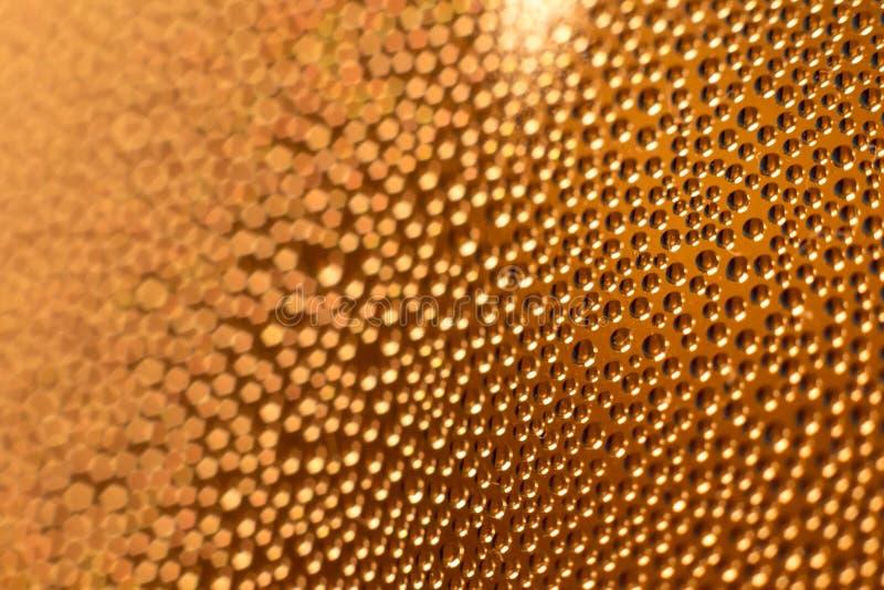 Molhe gotas da condensação no vidro frio gelado da cerveja imagem de stock royalty free