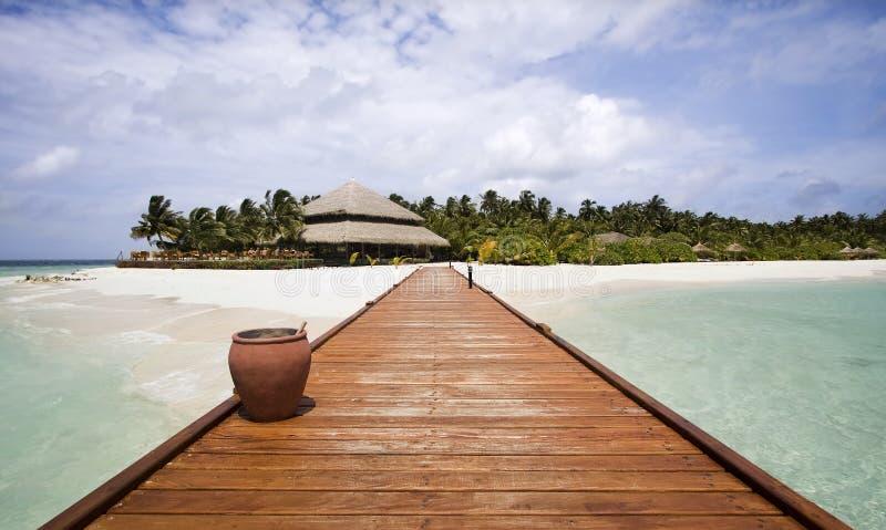 Molhe, Maldives fotos de stock royalty free