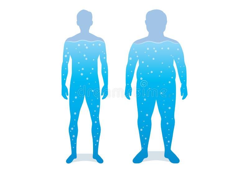 Molhe no corpo da diferença entre o homem escultural e a gordura ilustração do vetor