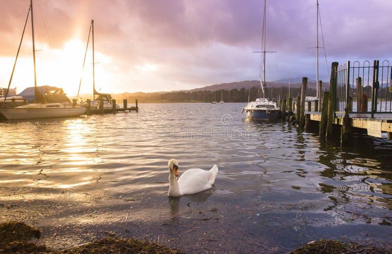 Molhe no parque nacional do distrito do lago, Inglaterra, Reino Unido imagens de stock royalty free
