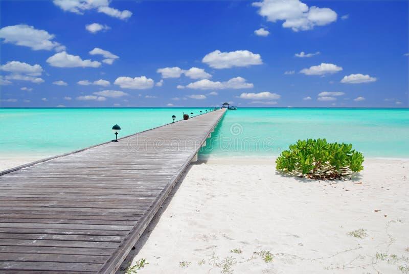 Molhe nos Maldives imagens de stock royalty free
