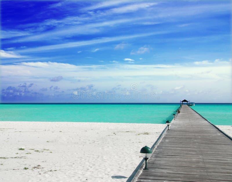 Molhe nos Maldives foto de stock