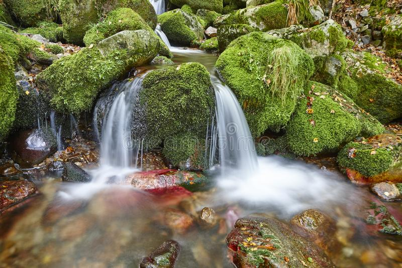 Molhe o córrego com as rochas musgosos na reserva da biosfera de Muniellos fotografia de stock