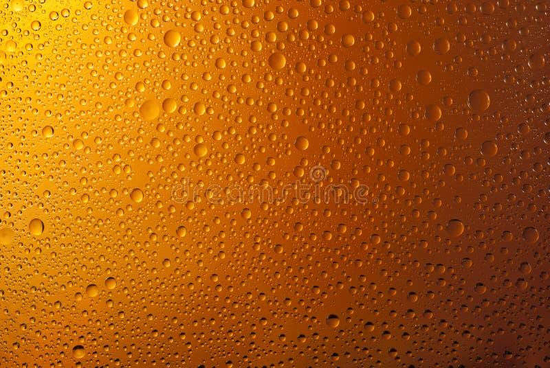 Molhe o fundo das gotas, coberto com as gotas da água - condensação, close up. fotos de stock royalty free