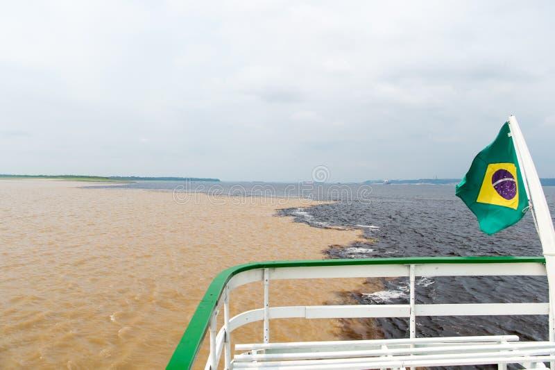Download Molhe A Reunião No Rio De Brasil - De Amazon Com Rio Del Negro Imagem de Stock - Imagem de verão, marrom: 80101055