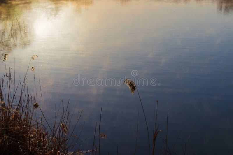Molhe a superfície da lagoa com o sol refletido da manhã imagem de stock