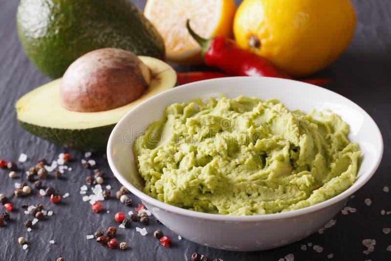 Molho fresco do guacamole com close-up dos ingredientes horizontal fotos de stock royalty free