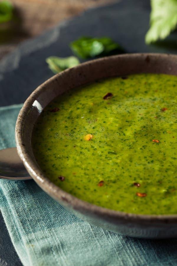Molho verde orgânico cru de Chimichurri imagem de stock royalty free